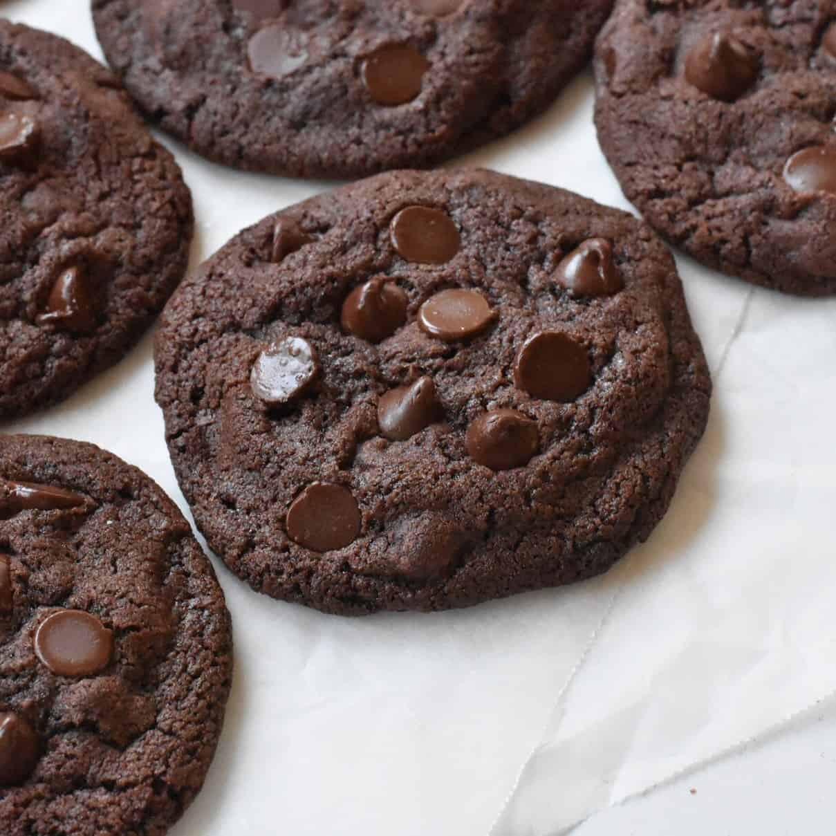 Double Chocolate Chip Cookie on display.
