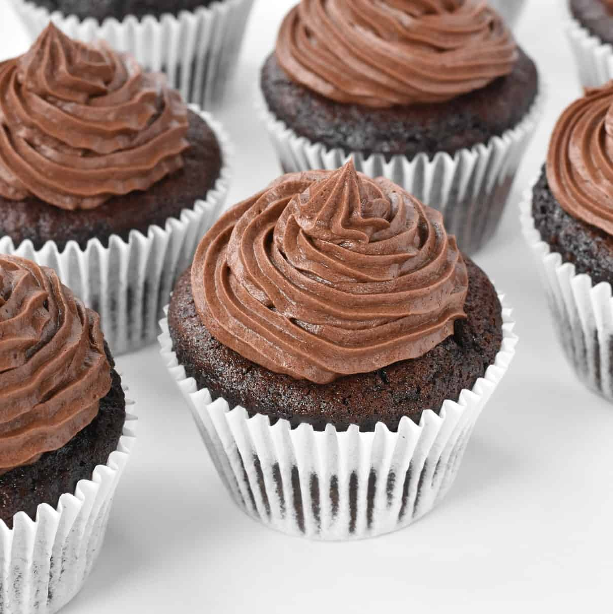 Chocolate cupcakes with buttercream swirls in a row.