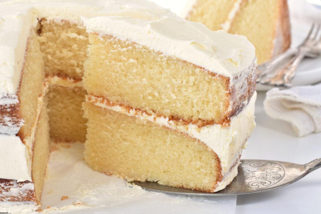 Slice of cake on server