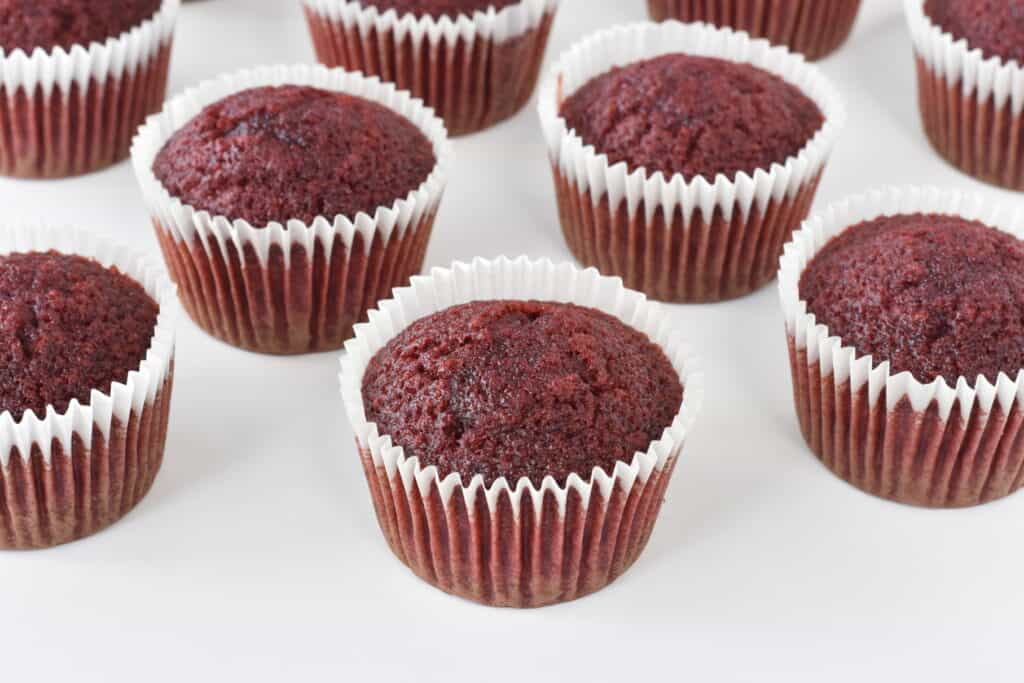 Red velvet cupcakes without frosting.